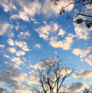 冬空�B.jpg