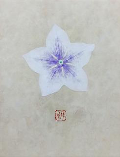 松田朋子「ききょう」0号.jpg