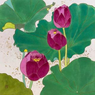 lotus-2.jpg